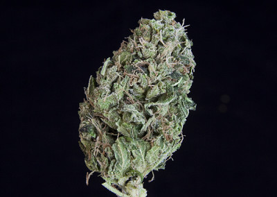 SPECIAL PRICING ***TCS Original Sour Diesel***($9.00/G, Grams Only!!!) (S/I – 60/40)