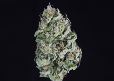 ***TCS BC Cheese #1 ($12.00/G, Grams Only!!!) (I/S – 60/40)