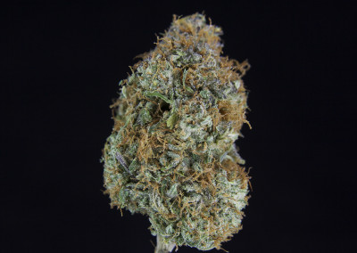 TCS Green Warrior #5 ($36.00/3.5G, $11.00/G) (S/I – 60/40)