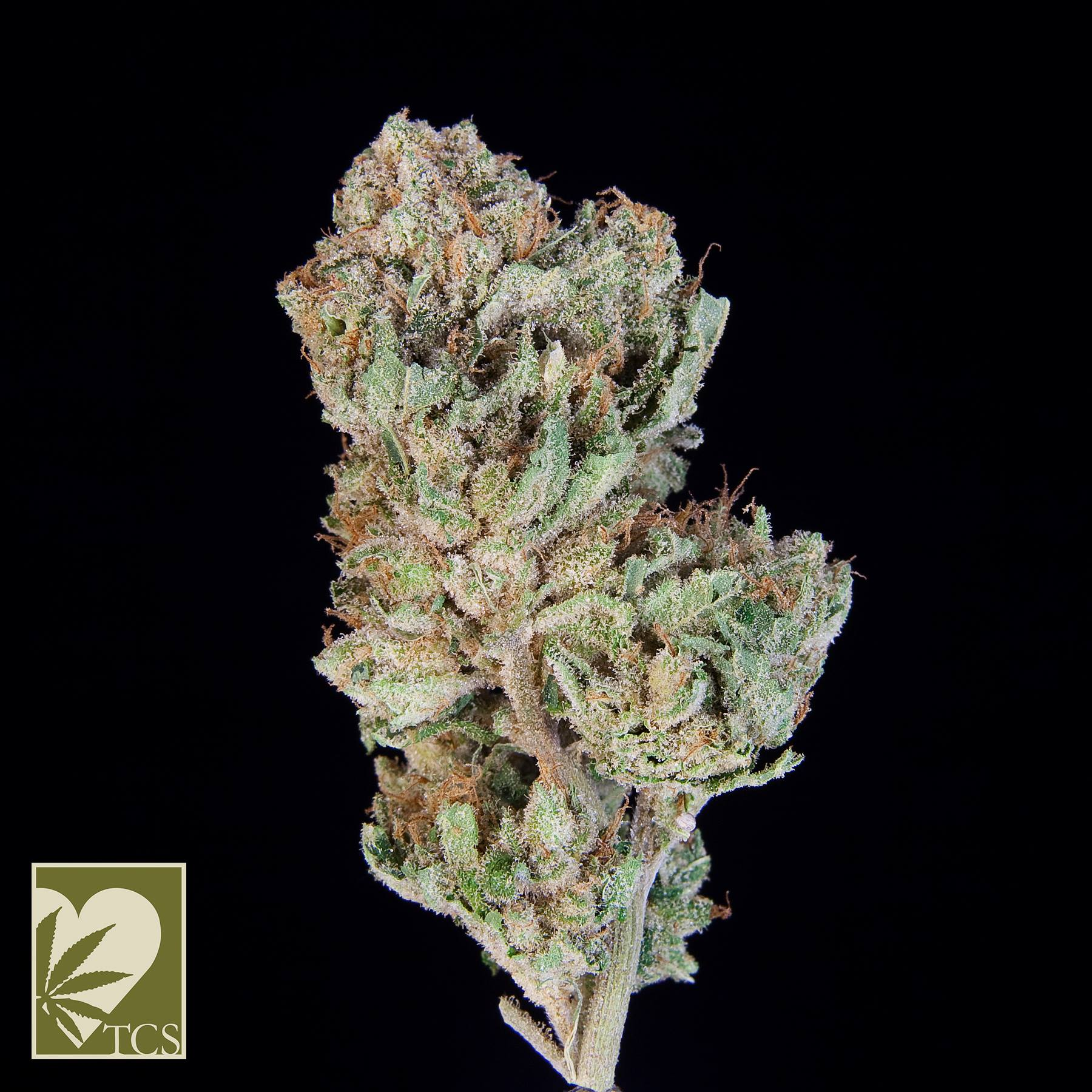 ***TCS Fire Alien Strawberry*** ($36.00/3.5G, Eighths Only!!!) (I/S – 65/35)