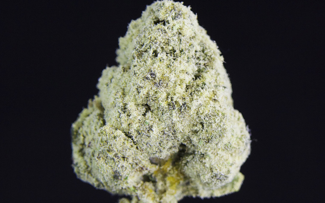 TCS Golden Nugget (Also Known as  Moonrock ($45.00 each)