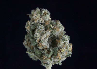 **SPECIAL PRICING**TCS Lemon OG Kush ($28.00/3.5G, $8.00/G) (I/S – 60/40)