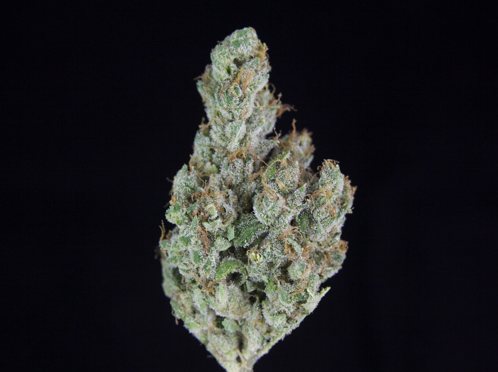 TCS Sour Kosher ($11.00/G, Grams Only!) (S/I – 70/30)
