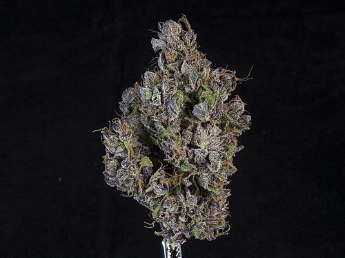 ***24.319% THC*** Purple Chem ($17/g, $55/3.5)
