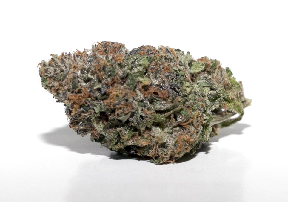 *TCS BC Cheese ($36.00/3.5g, Eighths Only!) (I/S – 60/40)